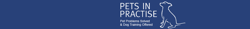 Pets In Practice