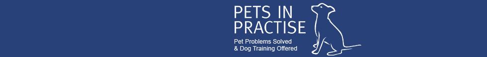 Pets In Practice